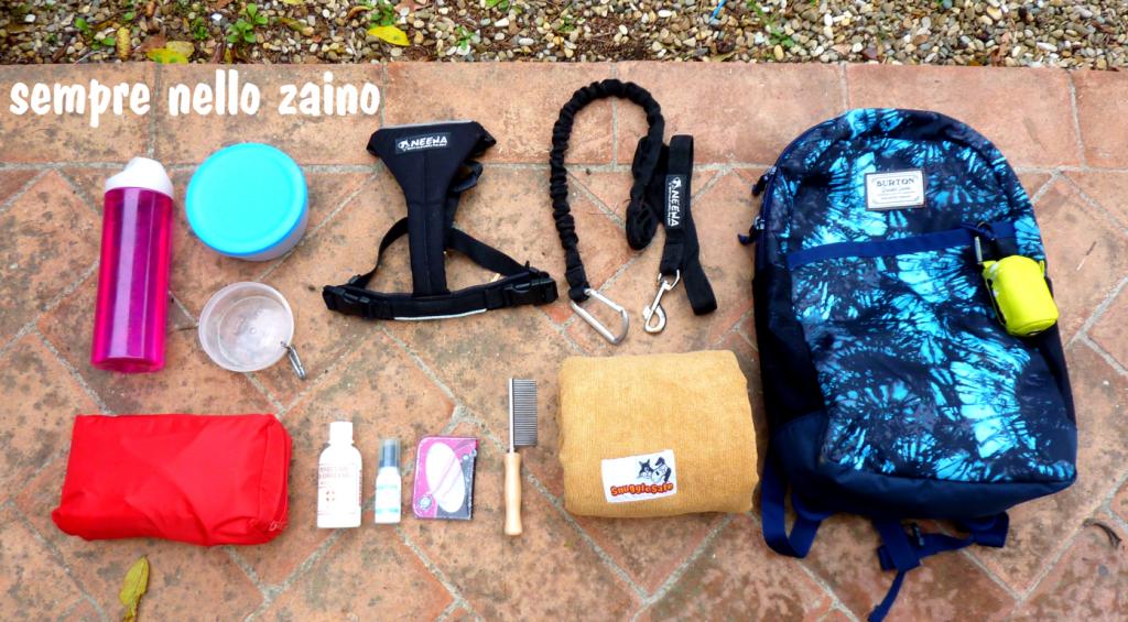 the best attitude 625d9 005cc Attrezzatura per dog trekking: cosa portarsi per un ...